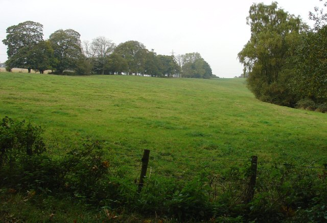 Pastureland, Near Newstead Farm, West Sussex
