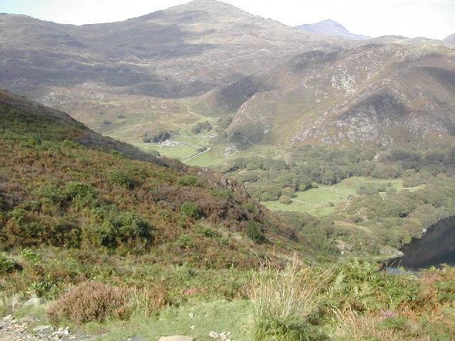 Mynydd Llyndy hillside