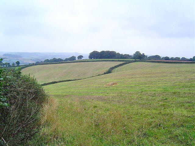 Near Newton Abbot