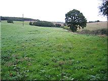 TQ8954 : Flint Lane, Lenham, Kent by Rodney Burton