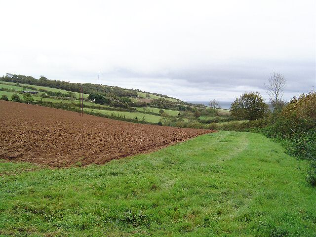 Field near Cotmere