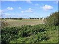 TL1637 : Shefford By-pass, Beds by Rodney Burton