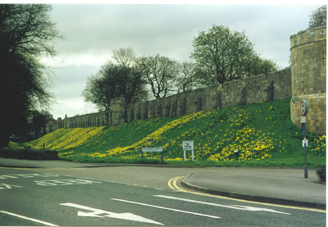 Moatside Court and city walls, York