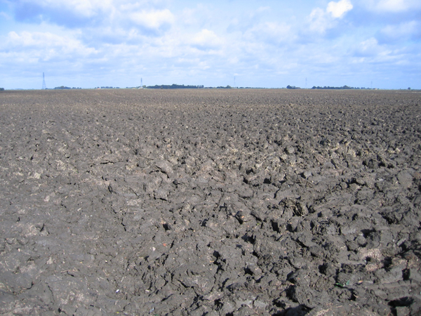 Very large ploughed field, Morris Fen, Thorney, Cambs