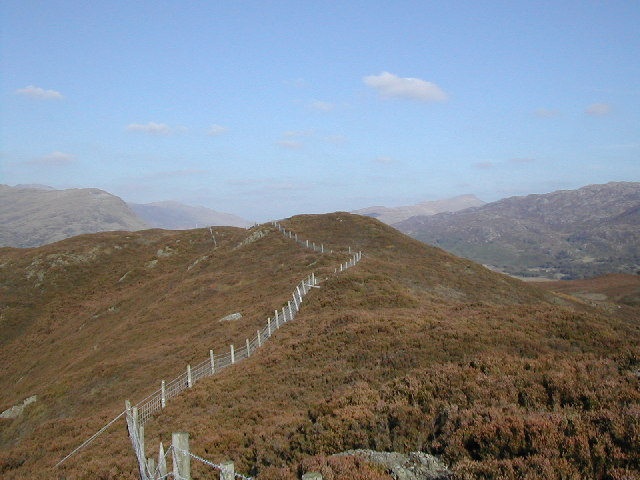 Summit of Mynydd Llyndy