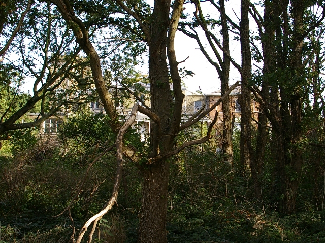 Hanworth Park House