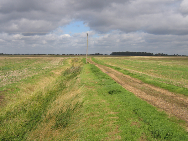 North Fen, Thorney, Cambs