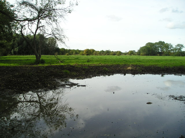 Reflections on a field
