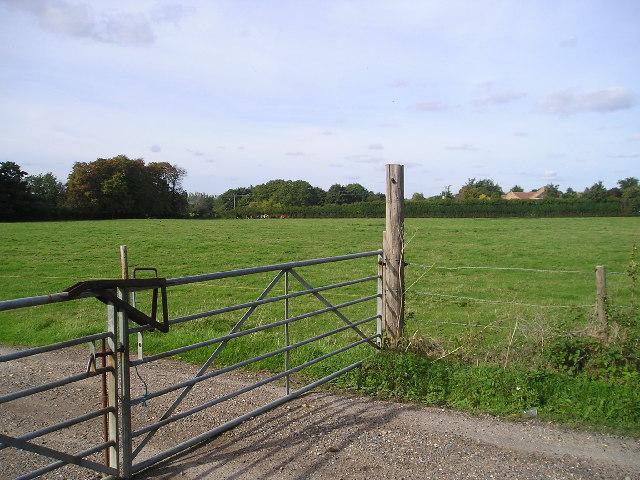 Fordham Field