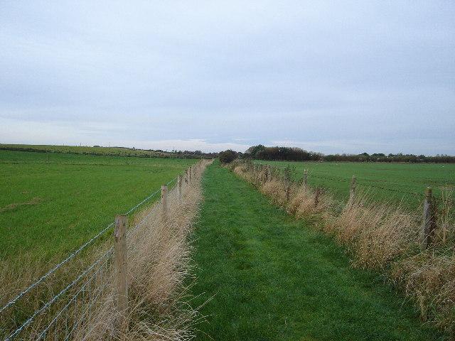 Footpath to Skipsea