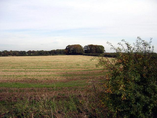 Looking towards Barrow