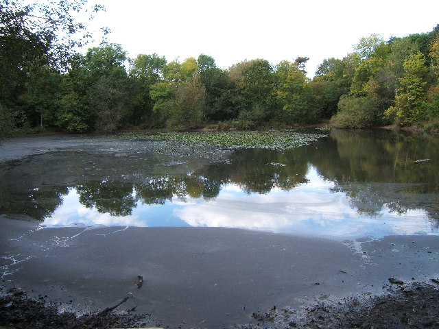Upper Pond, Ashtead Park