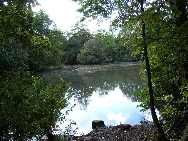 Lower Pond, Ashtead Park