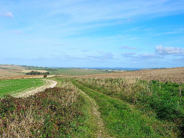 Bridleway, Falmer Hill