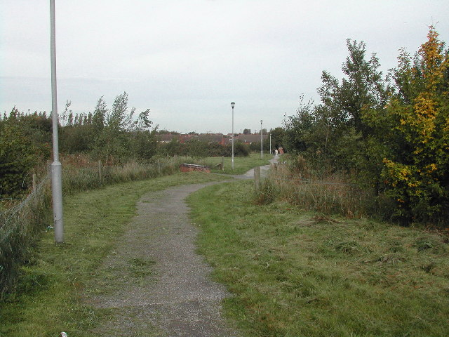 Housing Estate Footpath