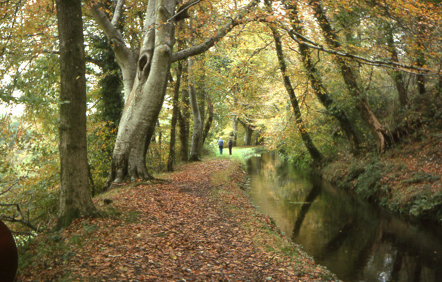 Tavistock Canal, Lumburn Valley