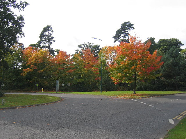 Warwick Road roundabout, Solihull