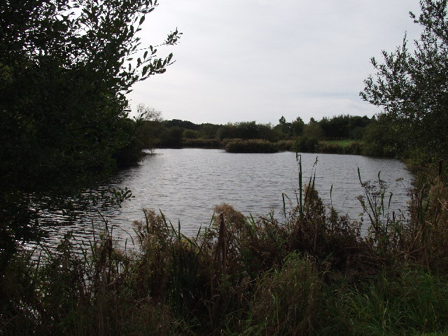 Fishing lakes at Middle Sontley