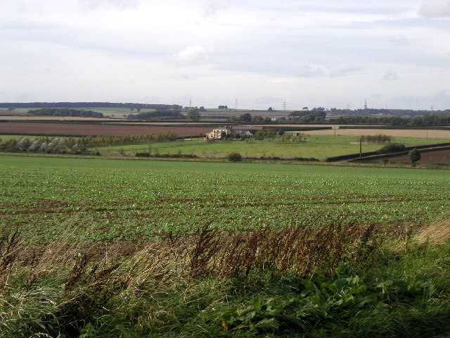 Southern Wolds View