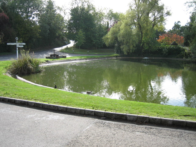 Pond near crossroad