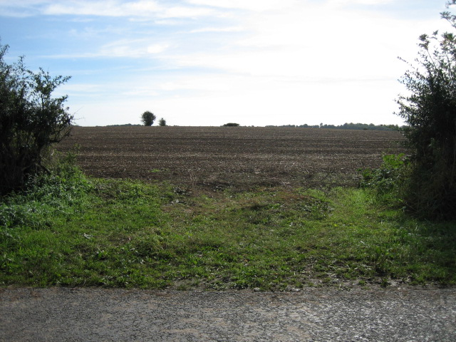 Field near Crawley