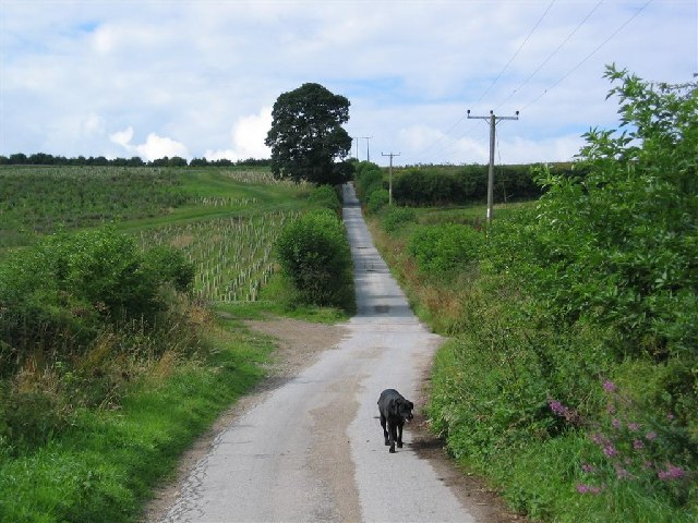 The Road up  Eddisbury Hill