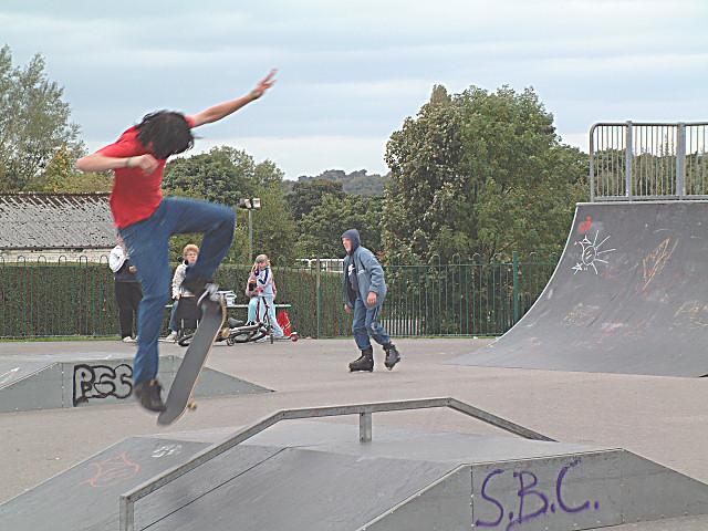 Image Result For S Skate Board