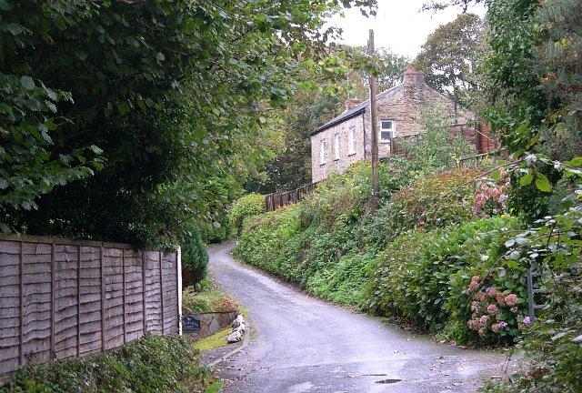 Minor road along the valley bottom at Carnbargus