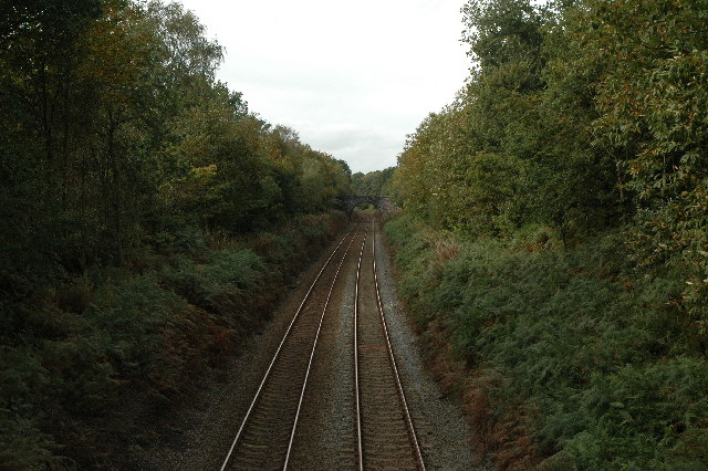 Railway through Delamere Forest