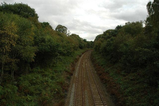 Railway through Delamere Forest