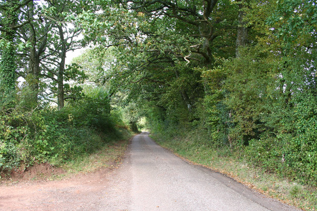 Wiveliscombe: Quakinghouse Lane
