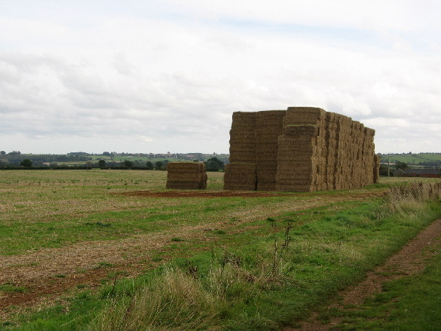 Stacked bales, near Terrace Hills Farm