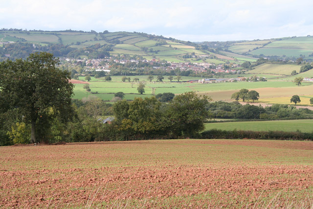 Wiveliscombe: field with new crop; the town in the distance