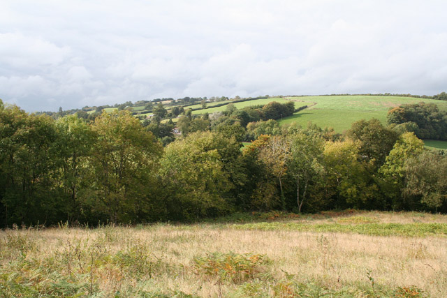 Bathealton: Hurstone Local Nature Reserve