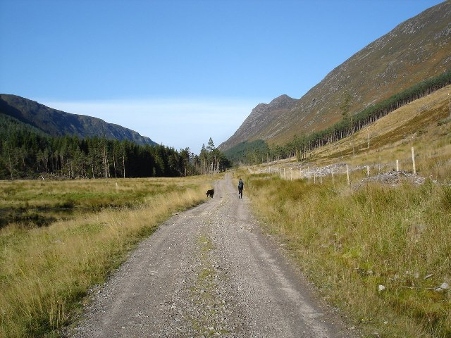 Forestry road in Gleann Meanich