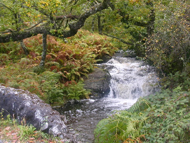 Waterfall on the B842 near to Clonaig Ferry terminal, Kintyre.