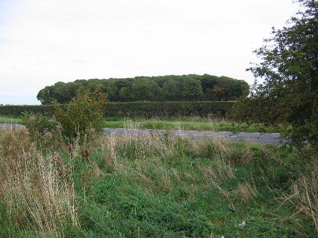 Clubley's Plantation