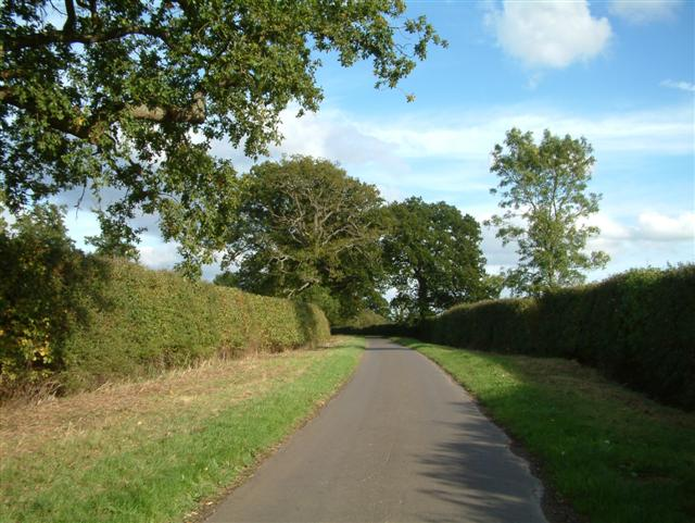 The Road to Southend Farm