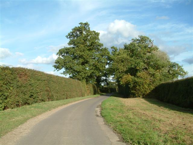 The Road to Ives Farm
