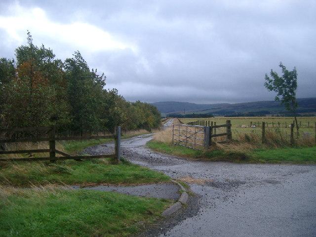 Farm Track near Sheriffmuir
