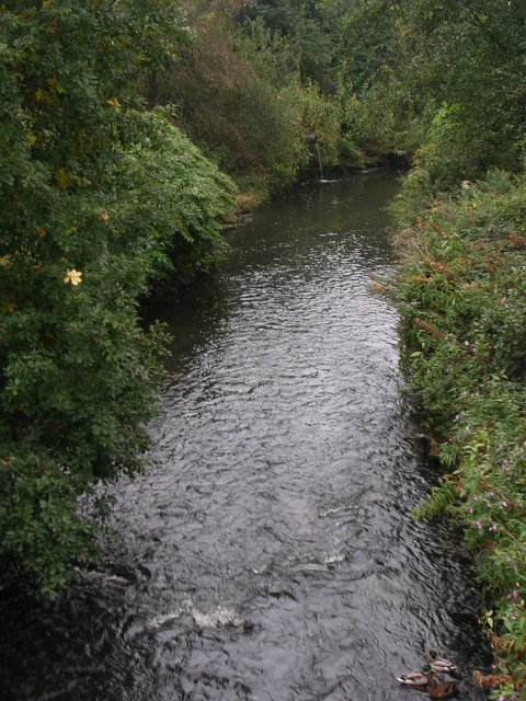 River Irk from Heaton Park Road West Bridge