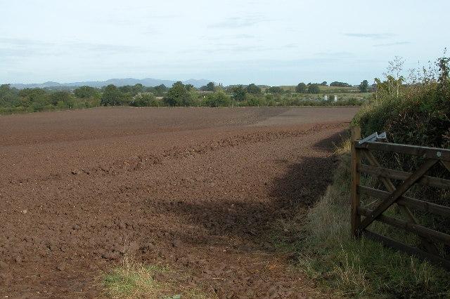 View from near Cripp's Farm