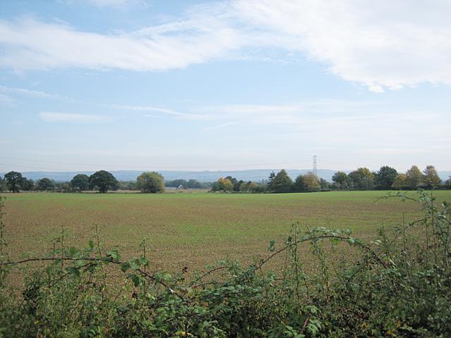 Fields near Ashton-Under-Hill