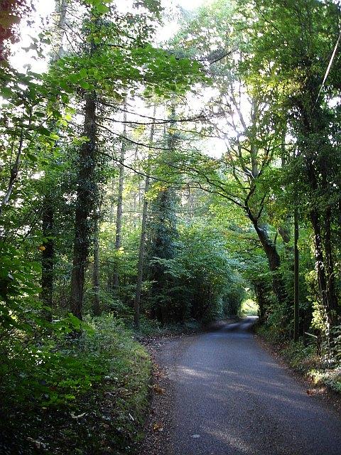 Gravelly Bottom Road