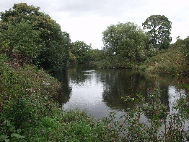 Afon Dyfrdwy just north of Overton Bridge