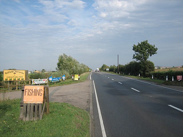 Belfield Nurseries, A46