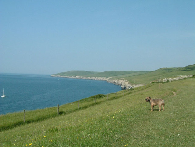 Dorset Coast Path, Langton Matravers, Dorset