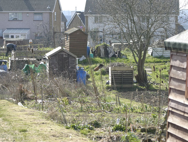 The Allotments, Nicholas Lane, Bristol