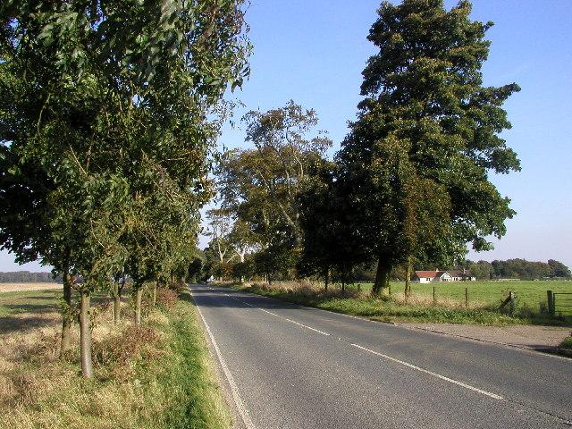 The road to Walkington