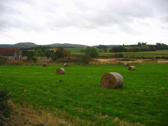 Hay bales, Woodend